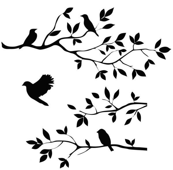 vetve ptaci 1